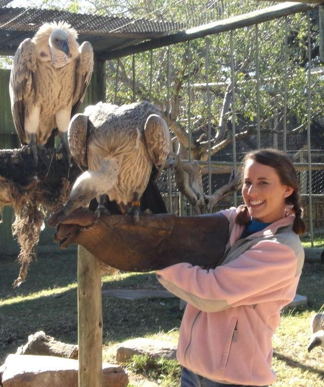 Dianne+Mohr%2C+a+2011+alumna%2C+worked+with+wild+animals+during+her+senior+year+study+abroad+trip+to+South+Africa.