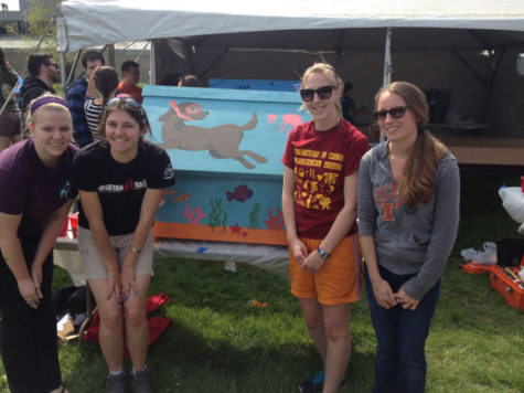 Veterinary Medicine students build dog houses for local shelters