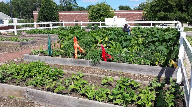 The Prosperity Gardens employ at-risk youth to participate in planting, watering and harvesting, as well as assisting in the weekly farm stand.