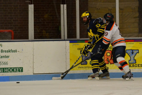 Illinois hockey's William Nunez fights for the puck during the game against the University of Michigan-Dearborn on Saturday night. The Illini won 5-1.