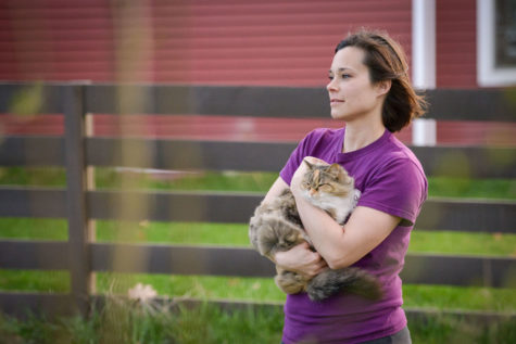 Country Cats gives unwanted pets a second chance