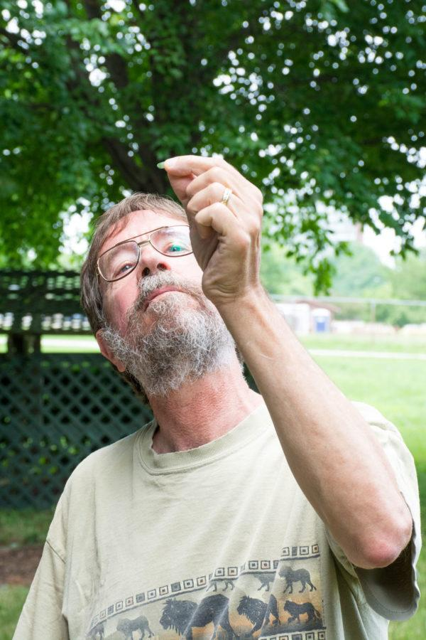 Christopher Kimble, University alumnus, examines the leaf of a St. John's Wort plant at the College of Veterinary Medicine's Poisonous Plant Garden open house on Saturday, June 20.
