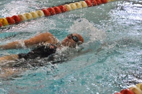 Illinois dominates Dual Meet Spectacular