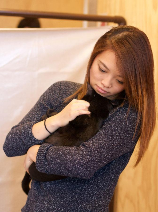 Kristy, UIUC graduate and cofounder of the CU Healthy Pet Project, holding Licorice at the Cat Cafe on Friday, October 16th.