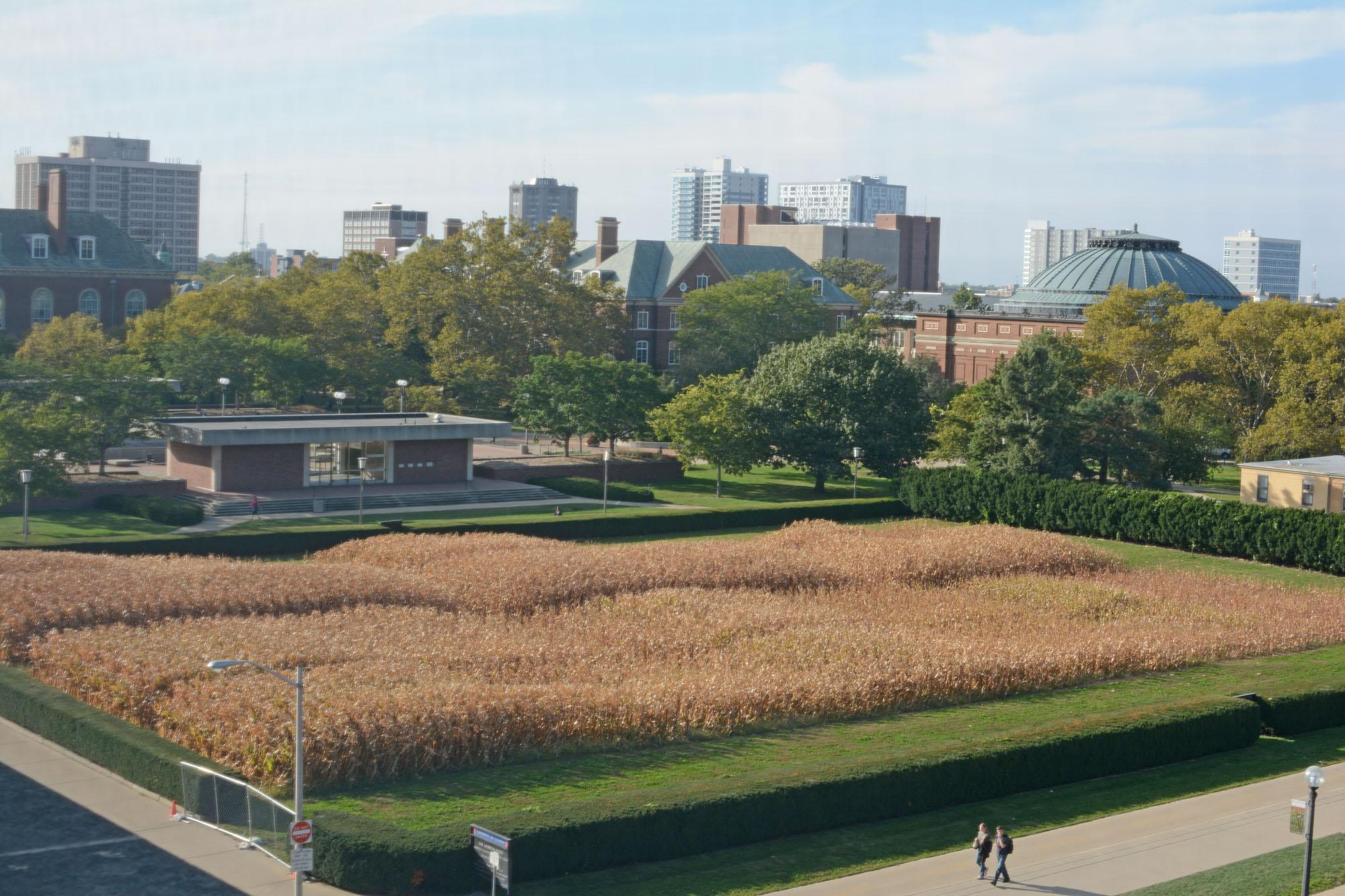 The Morrow Plots, located next to the Undergraduate Library, are the oldest agronomic experiment fields in the United States and include the longest-term continuous corn plot in the world.