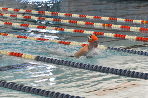 Illinois swimming and diving finishes weekend 2-1