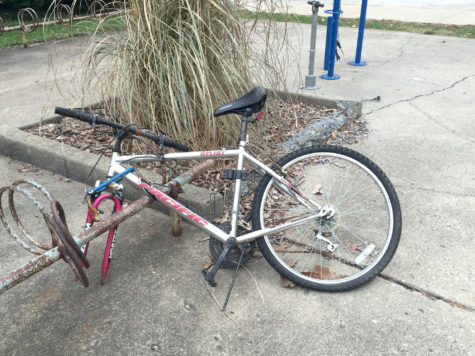 University resources begin abandoned bike removal