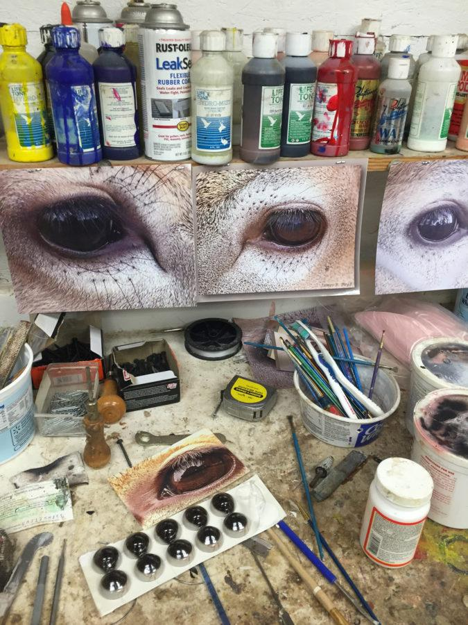 Photos of deer eyes hang above Eric Kibler's work area so he can refer back to them.