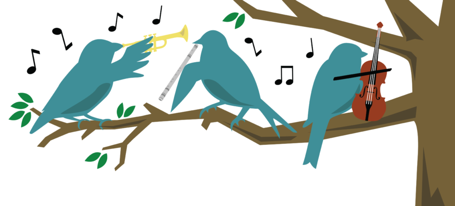 Birds and music: A sound combination this Saturday at Krannert