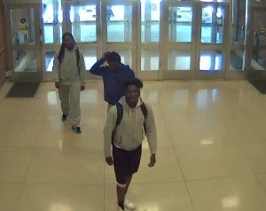 Video camera footage at Trelease Hall showing the suspects walking into the building Monday afternoon. The University of Illinois Police Department said for those who know any information on the suspects to call UIPD at 217-333-1216, or contact the Champaign County Crime Stoppers, at 217-373-8477.