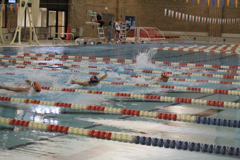 Freshmen swimmers prove to be up to the challenge