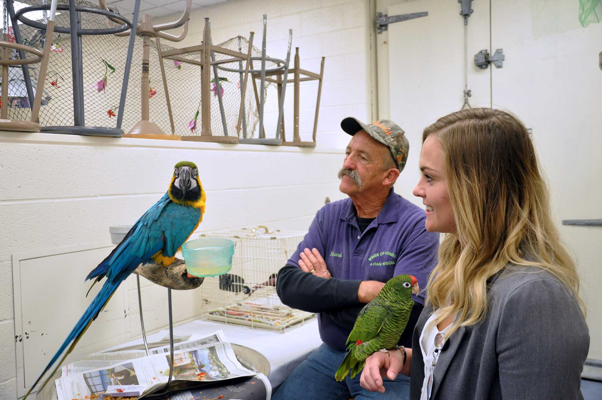 Amanda Radek and Richard Hungerford, members of Wings of Wonder Aviation Rescue, look at one the parrots at the Vet Med Open House at the Vet Med Building on October 4, 2015.