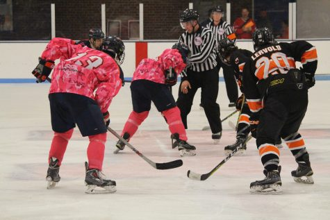 Illinois hockey looks to pull off upset on the road this weekend