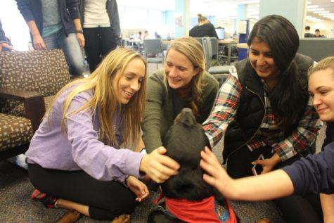Free Reading Day activities provide stress relief