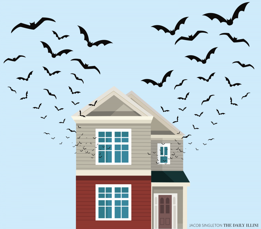 Bats take shelter in CU homes
