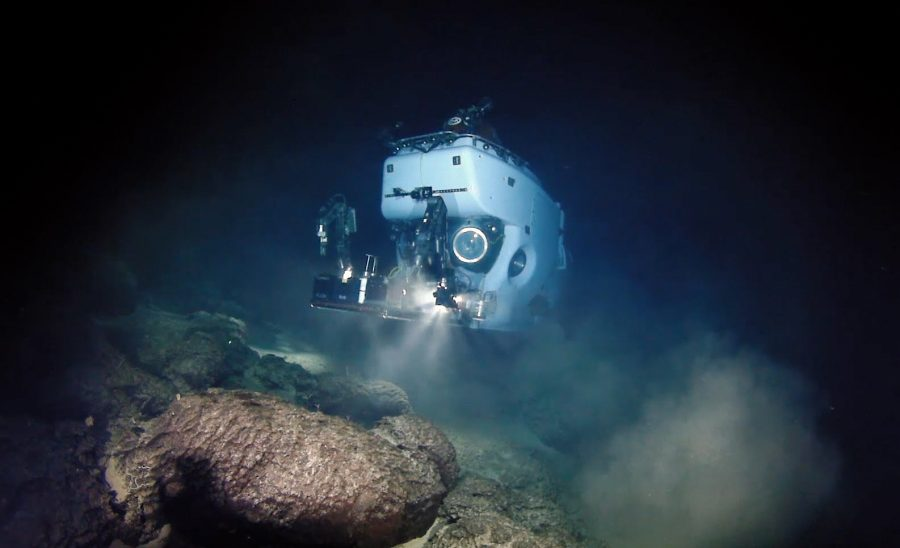 Photos+and+video+taken+from+DSV+Alvin+using+WHOI+MISO+Facility+deep-sea+camera+systems+and+Alvin+cameras.+