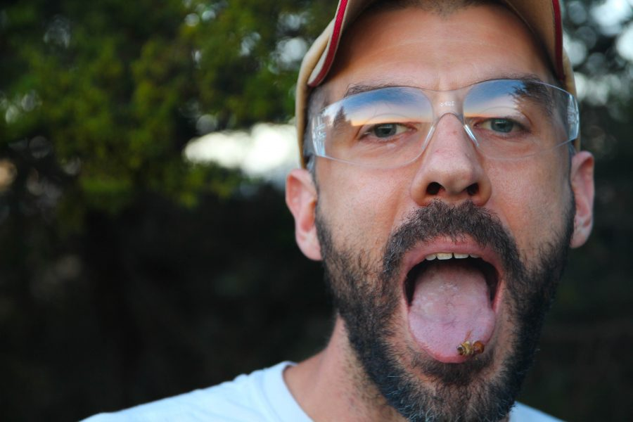 Kacey Nelson places a drone bee on his tongue while checking on his bee hives in Champaign, Illinois, on Monday, September 19, 2016.  Drones are male bees lacking stingers and are typically the largest variety. Few drones remain in his hives as they are the first to die in preparation for the winter season, Nelson said. Their primary function is assisting the queen bee in fertility.