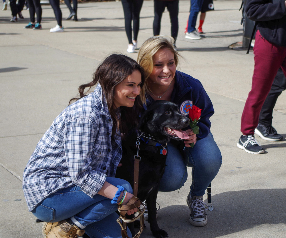The Illini Service Dogs grab the attention of students on the quad, outside of the union, on Tuesday, Feb. 14th.
