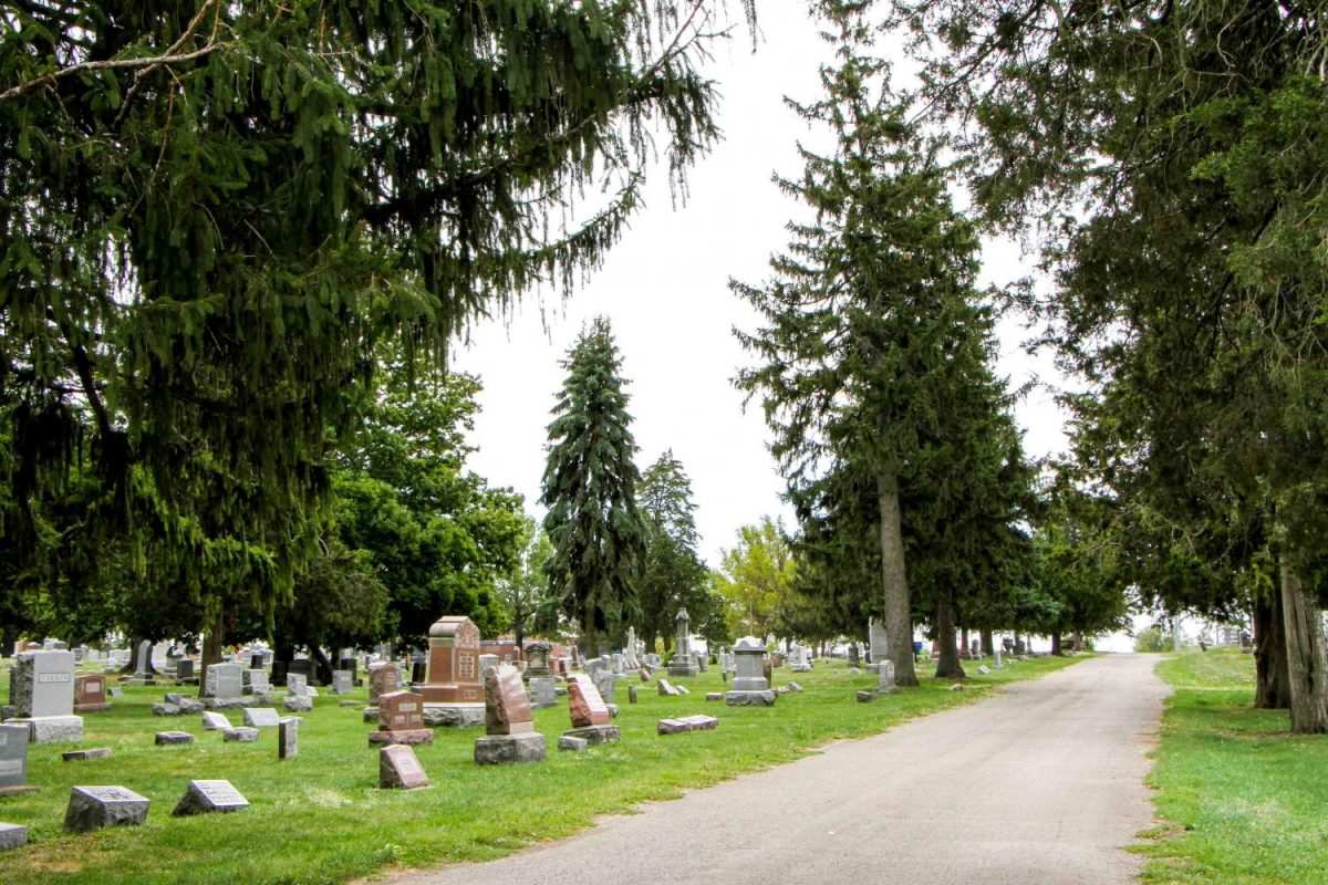The Wellness Center hosts midday walks through many places like the Mt Hope Cemetery.