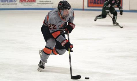 Illinois hockey maintains winning record after win over Northern Illinois