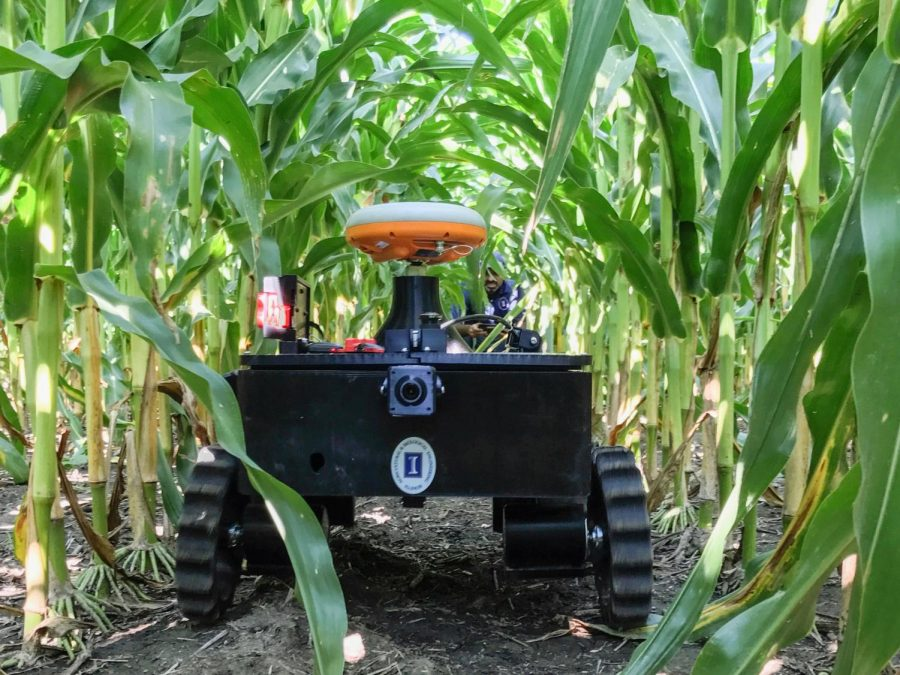 TerraSentia - the ultracompact, autonomous, teachable robot developed by EarthSense, Inc. was tested in a corn field in August, 2017. TerraSentia delivers critical plant information about plant traits to corp scientists and breeders, using a variety of sensors to obtain data and employing sophisticated on-board machine learning and machine vision algorithms to analyze the data.