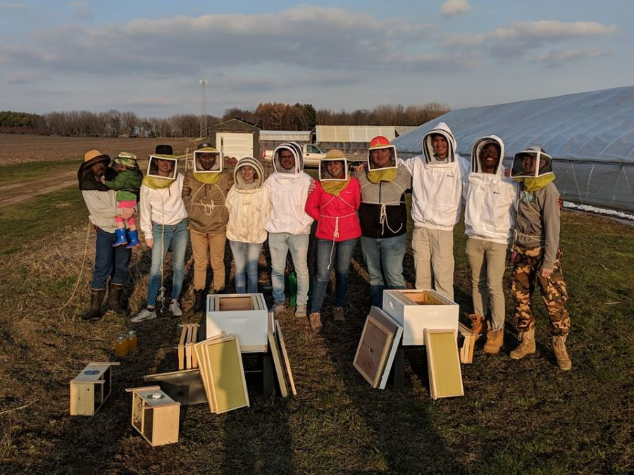 photo courtesy of matt Turino Members of the Beekeeping Club at UIUC assemble to unload bees onto the Sustainable Student Farm. The RSO was created to educate members on proper beekeeping standards and protocol while also serving as a hobby for interested students.