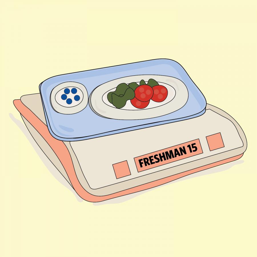 Freshman15-01