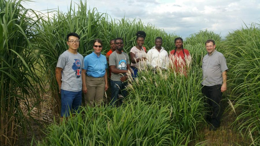 Erik+Sacks%2C+Hongxu+Dong%2C+Lindsay+Clark+and+five+visiting+graduate+students+from+the+University+of+Ghana%2FThe+West+Africa+Centre+for+Crop+Improvement+%28WACCI%29+at+the+plots+in+summer+2017.+