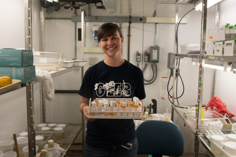 UI student receives Luckmann Award for mosquito study