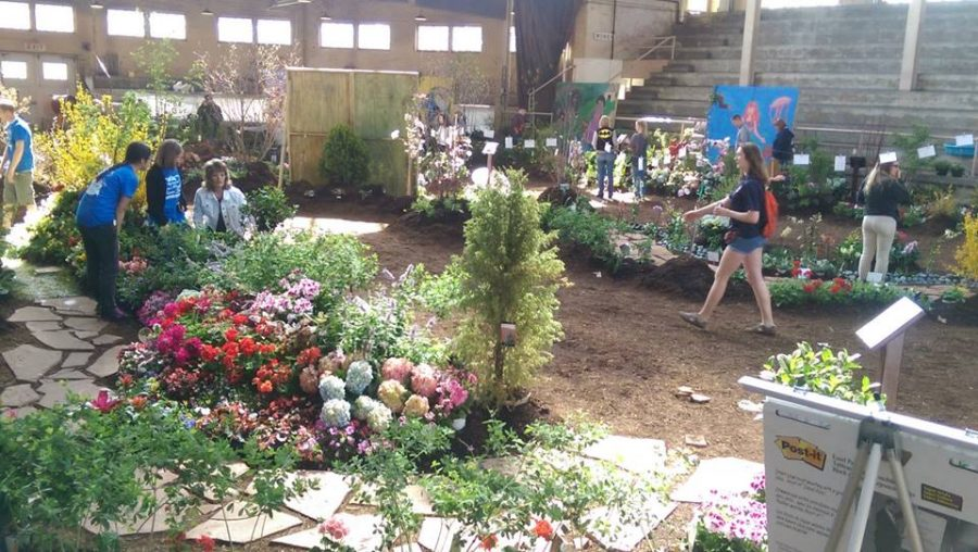 Members of the Horticulture Club arranged flowers into displays and paths at last year's show.