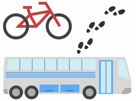 Safe and effective campus travel options