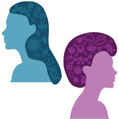 'Women in Microbiology': breaking into STEM