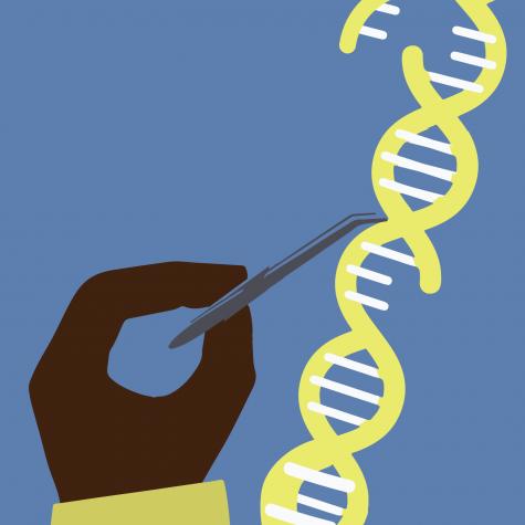 A CRISPR approach to gene editing