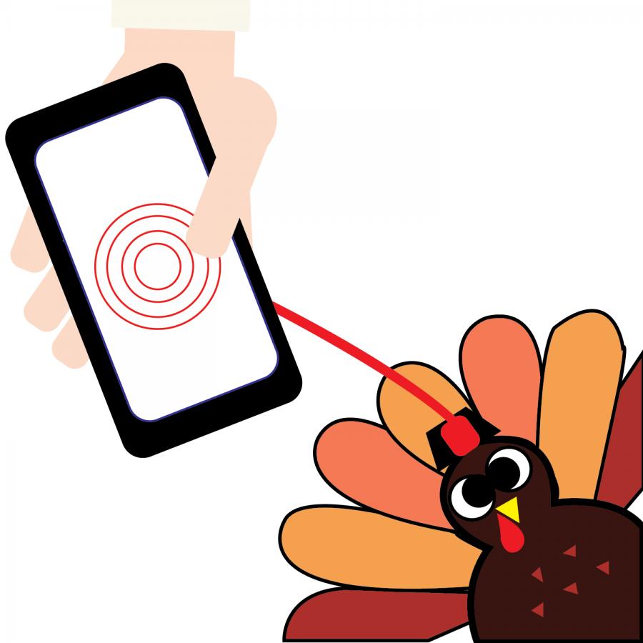 Graduate students track turkey behavior