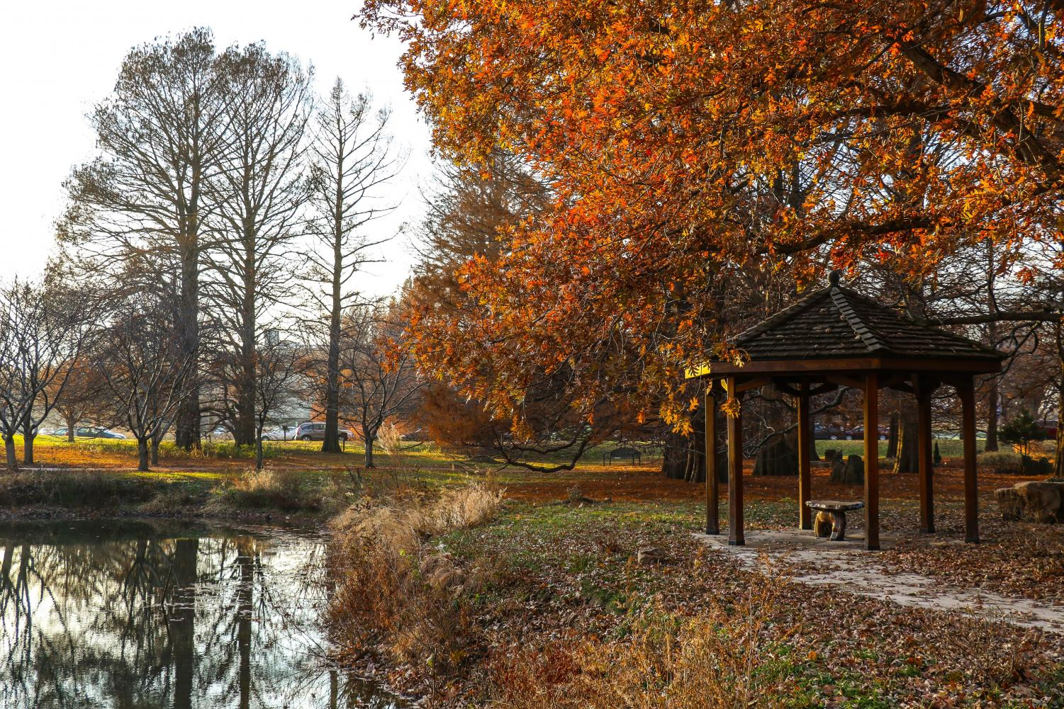 Arboretum at sunset on Friday. The climate change report, co-authored by University researchers, is encouraging local efforts to battle the effects of climate change. The report warns on the dangers of climate change.