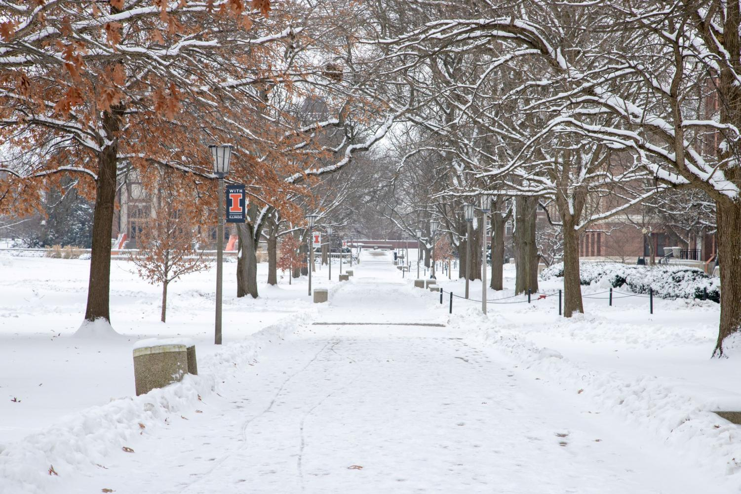 A sidewalk on the Main Quad is covered with snow and ice on Jan. 13.
