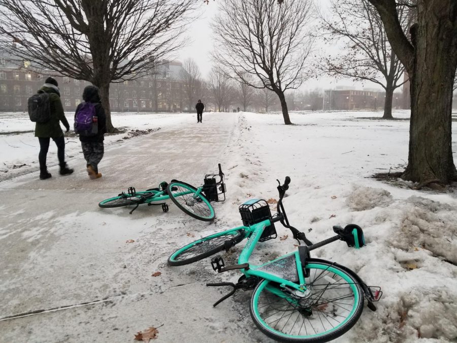 VeoRide bikes lay abandoned on the South Quad on Thursday. VeoRide management checks bikes daily to prevent weather damage.