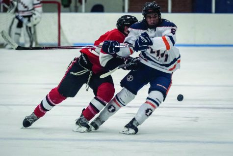 Illinois hockey looking for winning streak after weekend split