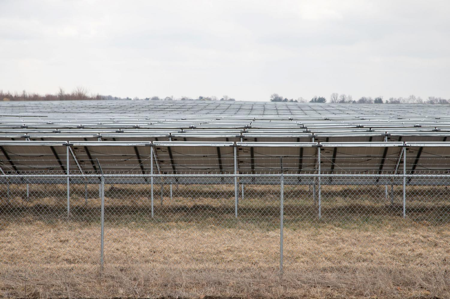 The University Solar Farm covers 20.8 acres and is located along the south side of Windsor Road between First Street and the railroad tracks.