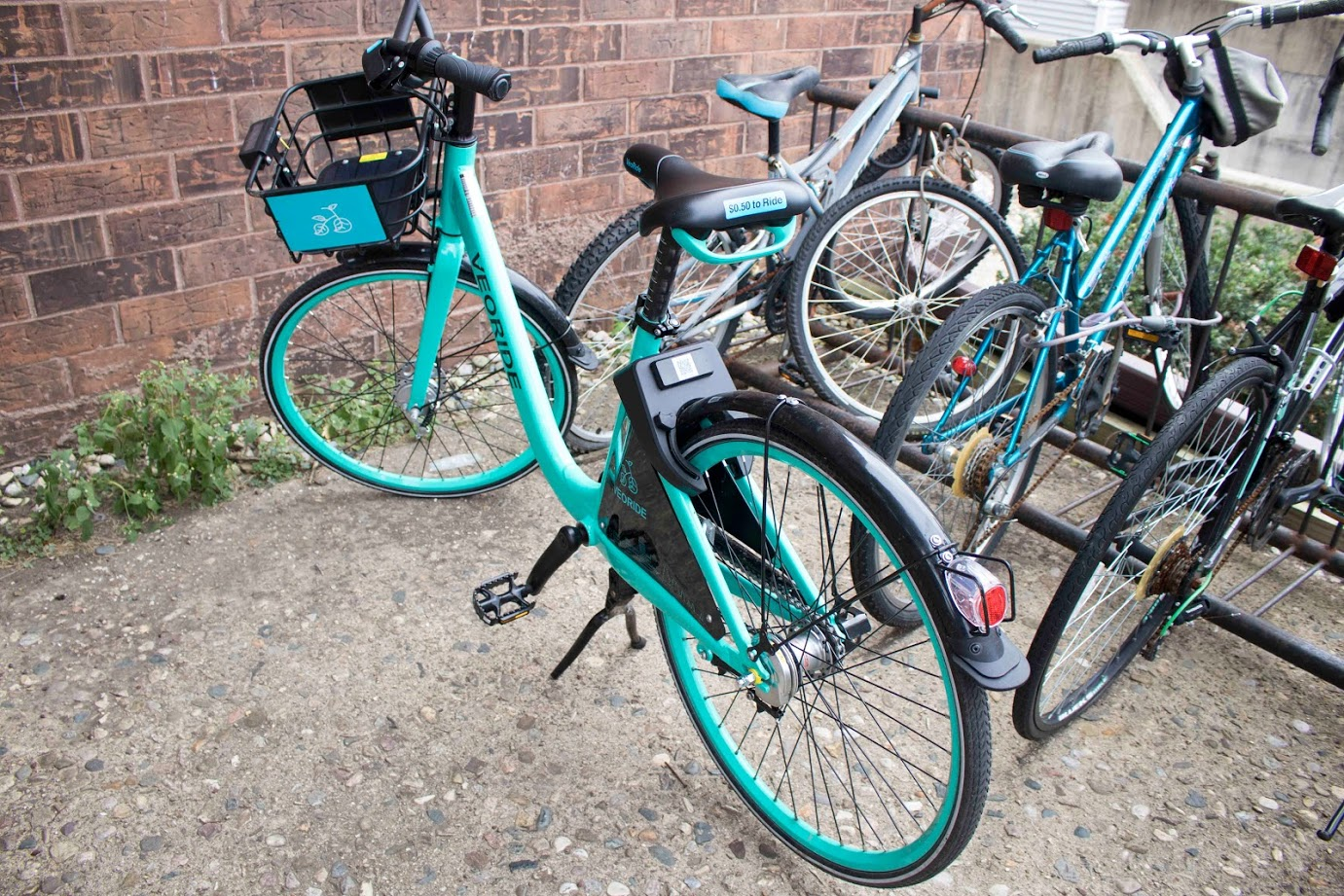 VeoRides are bikes open to the public for use through their app. The bikes are currently found laying around all over campus.
