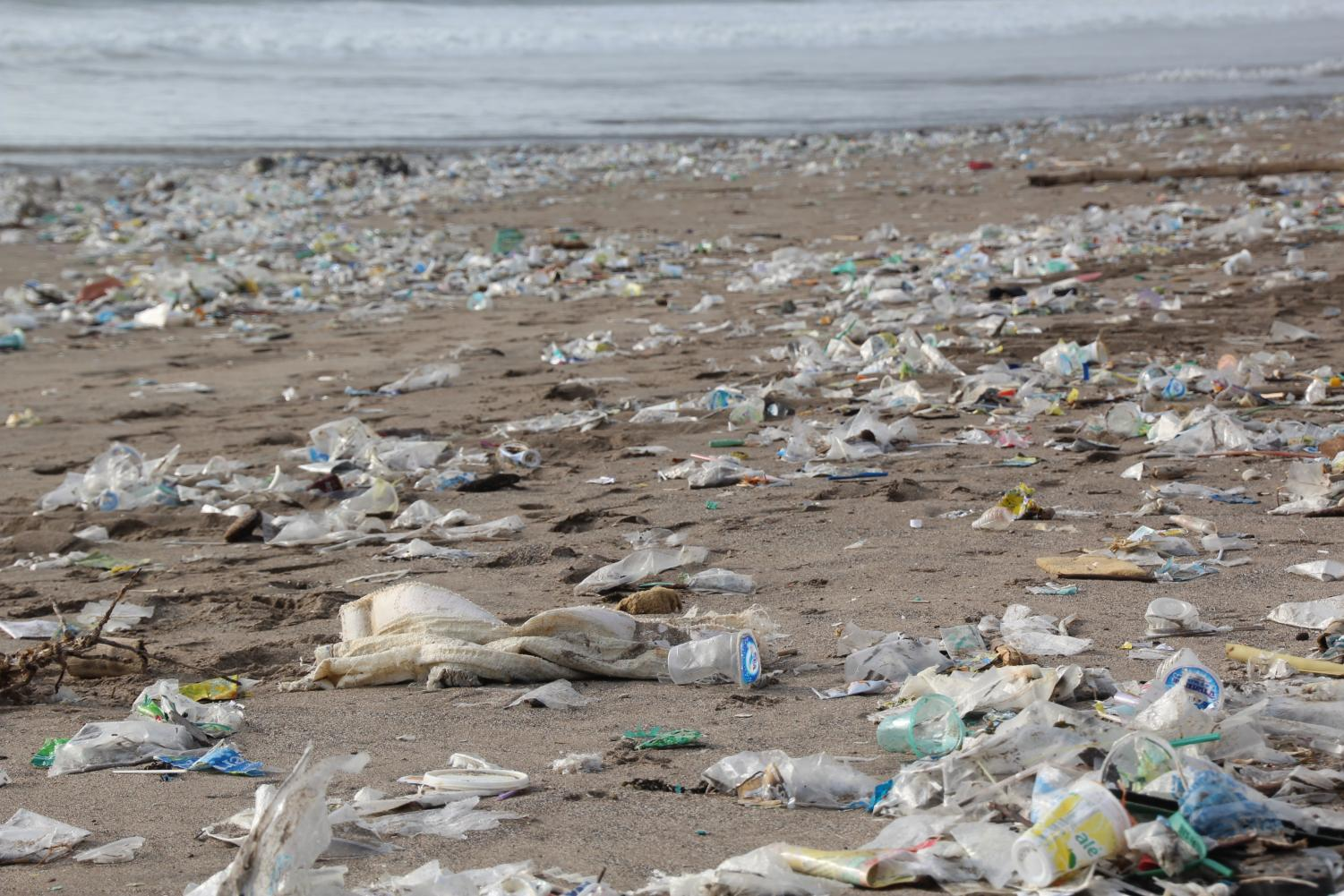 Columnist Hayley urges people to think about the consequences of the waste they produce during this upcoming Earth Day.
