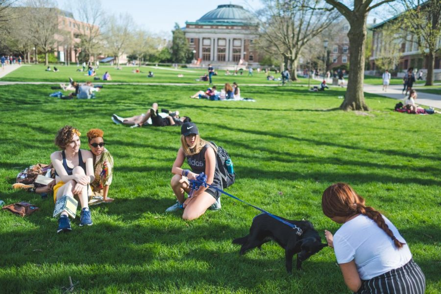 A student with a dog introduces him to other people on the quad on April 22.