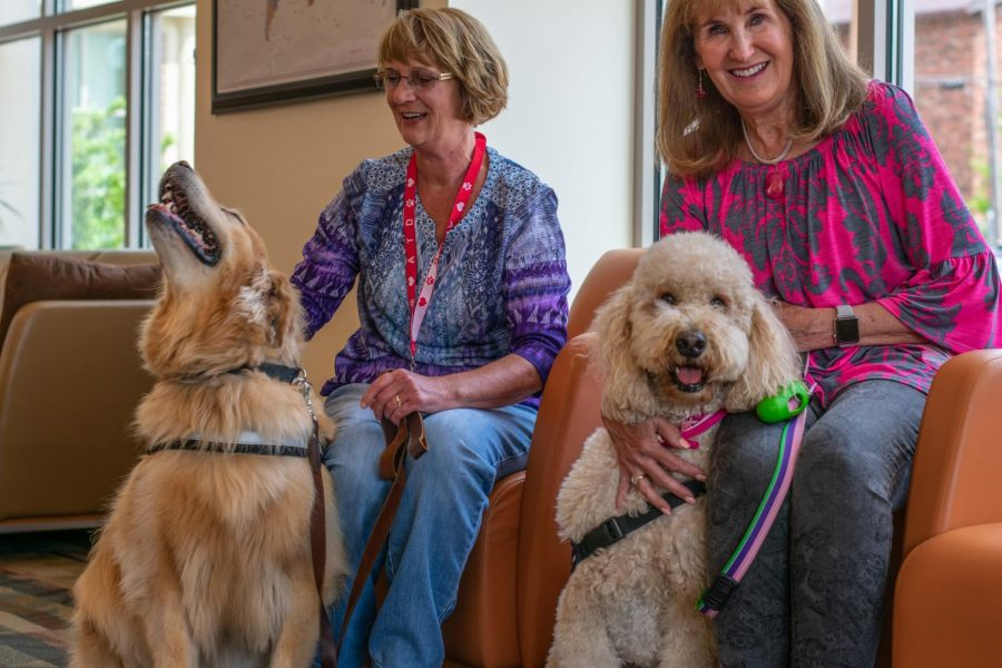Therapy dogs sit down during an event held at the Center for Wounded Veterans in Higher Education on Wednesday. Therapy dogs are used to dissolve stressful situations, including finals week on campus.