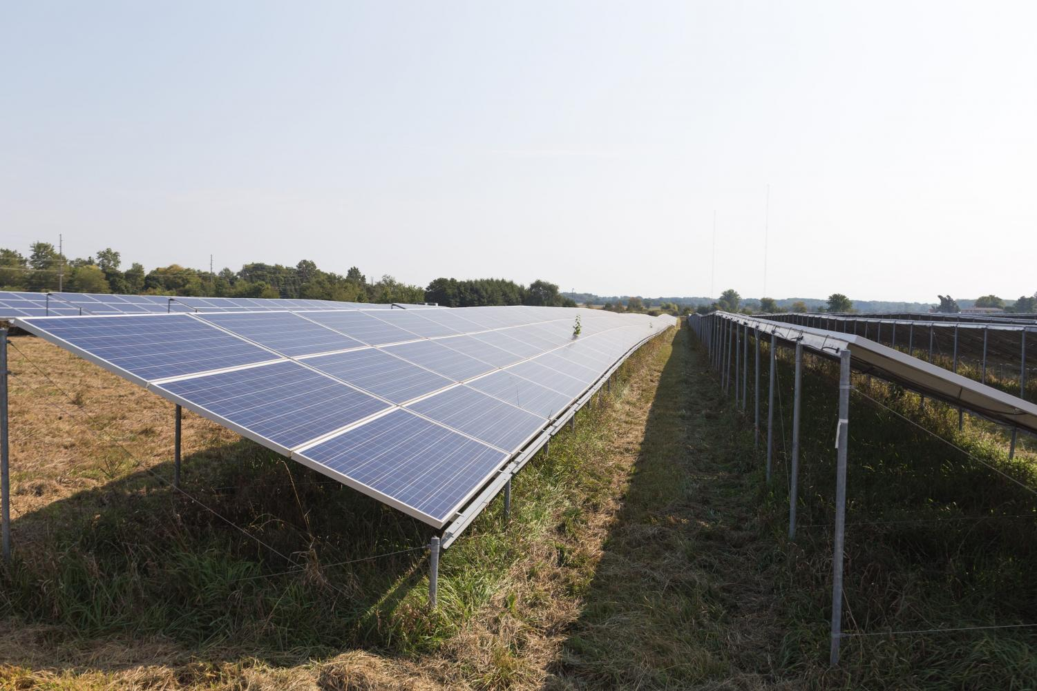 The Solar Power Panel Farm near First Street and Windsor Road has been in operation since December 2015. The University has recently agreed to a contract on creating a new solar farm.