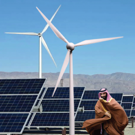 Aramco shows capitalism can lead charge for sustainability