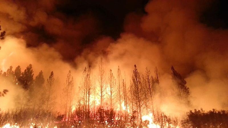 The+Rim+Fire+burned+more+than+250%2C000+acres+of+forest+near+Yosemite+National+Park+in+2013.+With+climate+change-related+forest+fires+on+the+rise+in+recent+years%2C+columnist+Maii+demands+immediate+action+to+save+our+planet%E2%80%99s+environmental+future.