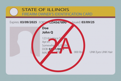 Opinion | Illinois FOID cards violate Second Amendment rights