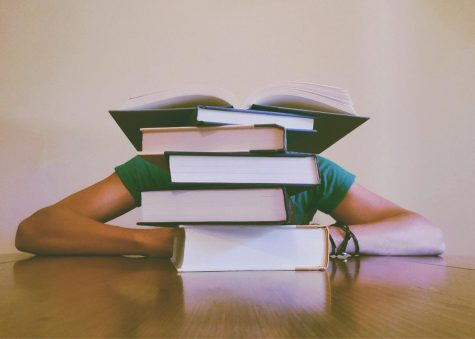 A student's head is obscured behind a tall stack of books.