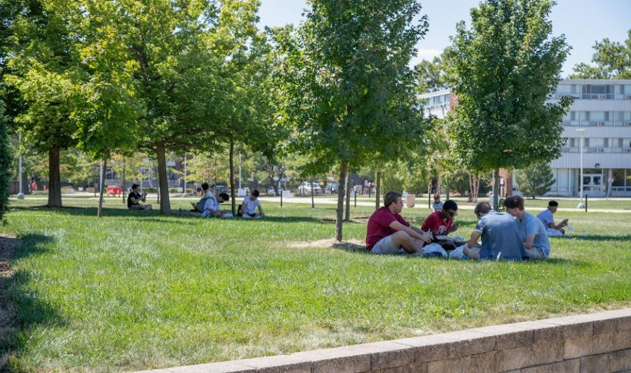 Students sit in the shade of trees on Friday