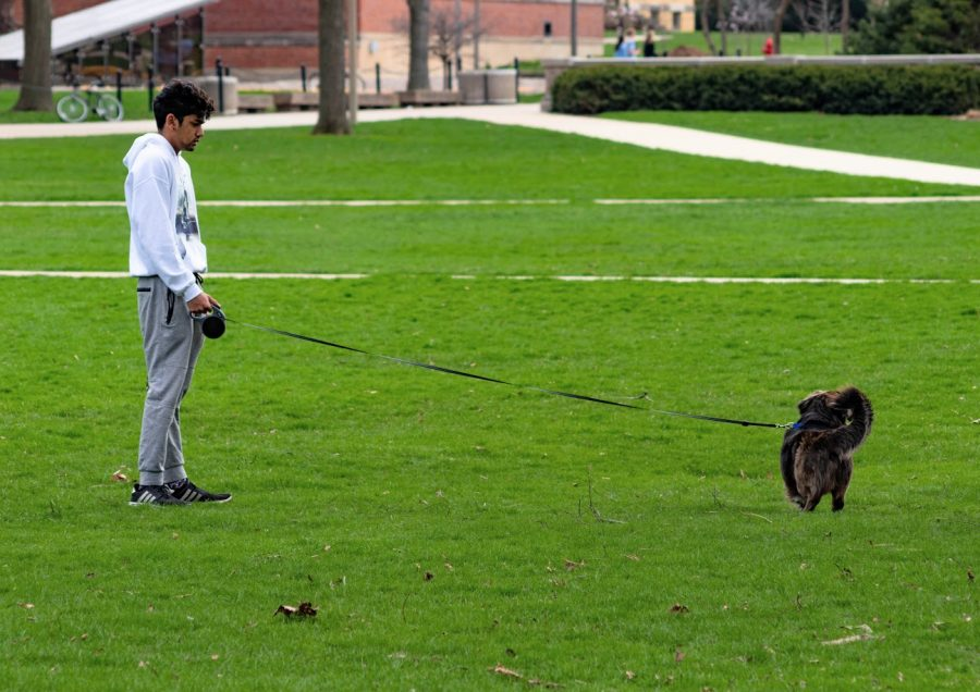 kevin gao The Daily Illini A student stands with a dog on a leash on the Main Quad on April 3. Columnist Marykate argues that owning a pet in college can help students practice healthy habits, such as establishing a routine.